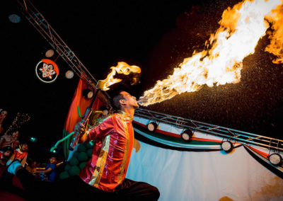 fire show14