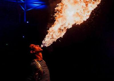 fire show7